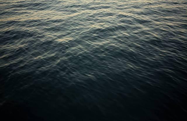 metzler on the sea 1