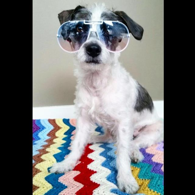 Cazal 901 1980s vintage sunglasses